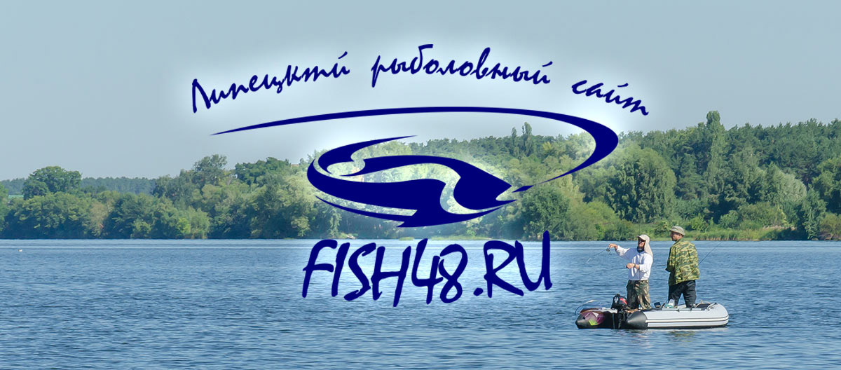 fish48_41.jpg